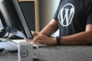 wordpress-wpupdate